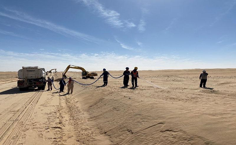 sand stabilization